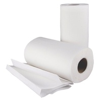 Kitchen Paper Towel 2ply 2 rolls x 60 sheets/roll - Packet